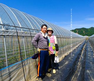トマト農家 鰐川雄太・裕子